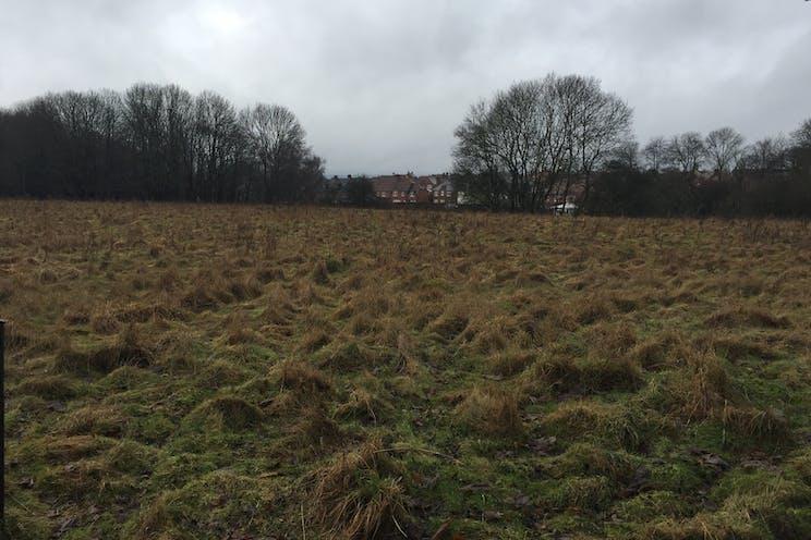 Land South Of Pinchington Lane, Newbury, Newbury, Development / Land For Sale - IMG6902.JPG
