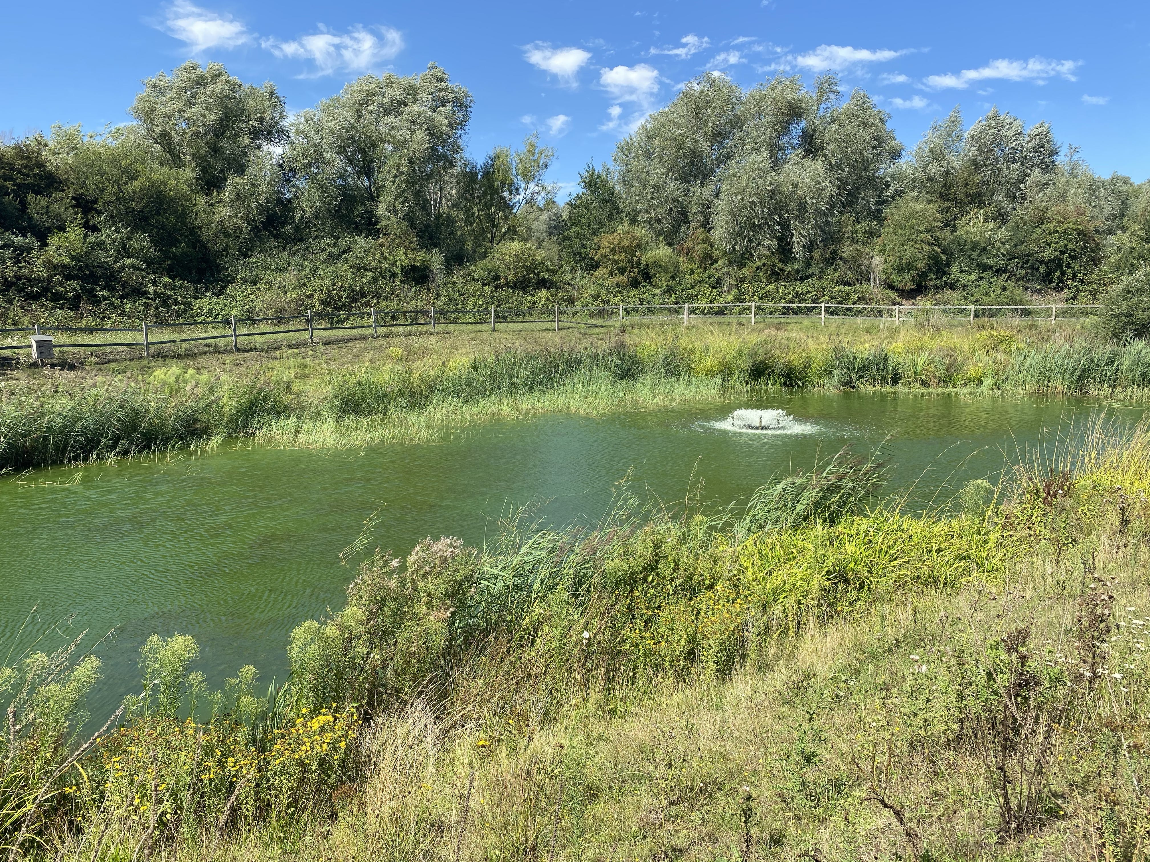 Unit 7, 8 & 9, Theale Lakes, Reading, Offices To Let - IMG_7838.jpg