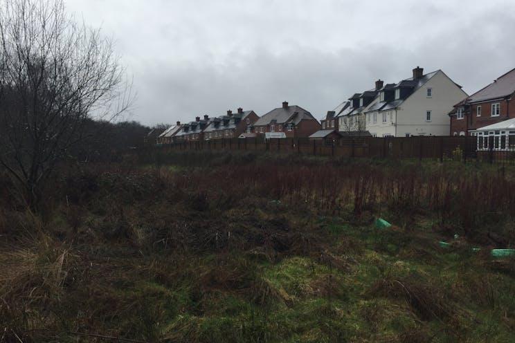 Land South Of Pinchington Lane, Newbury, Newbury, Development / Land For Sale - IMG6892.JPG